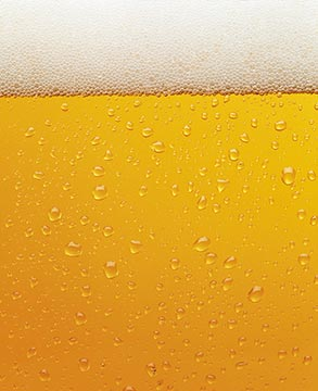 zdjęcia piwa Poznań