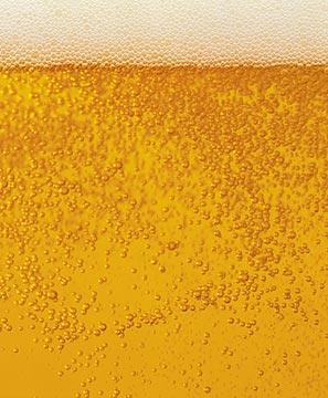 piwo zdjęcie Poznań